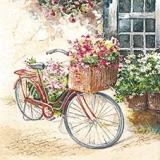 Fahrrad mit Blumenkorb vorm Fenster - Bicycle with basket of flowers in front of the window - Vélos avec panier de fleurs en face de la fenêtre