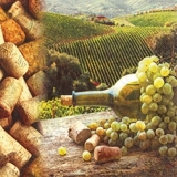 Weinanbau, Weintrauben, Korken - Wine, grapes, Cork - Vin, raisins, Cork
