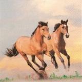 Wilde Pferde - Wild horses - Les chevaux sauvages