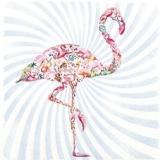 Exotischer Flamingo - Exotic Flamingo - Exotique Flamingo