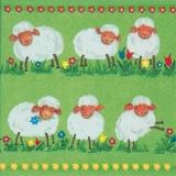 6 lustige Schafe - 6 funny sheep - 6 moutons drôle