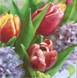 Duo aus Tulpen & Hyazinthen - Duo of tulips & hyacinths - Duo de tulipes & de jacinthes