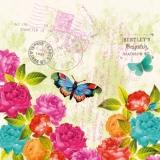 Bunte Rosen & Schmetterlinge auf Brief - Colorful Rosen & Butterflies on letter - Roses colorée & Papillons sur lettre