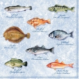 Fische - Fishes - Piscis