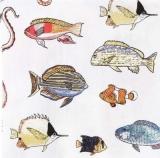 2 Kraken, 2 Seepferdchen und viele Fische - 2 octupus, 2 seahorses & man fishes - 2 Octopus, 2 hippocampes et beaucoup de poissons