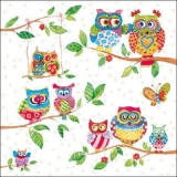 Lustige Eulen mit Schmetterling - Funny owls with butterfly -Hiboux drôles avec papillon