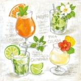 4 Cocktails Mojito, Tequila sunrise, Pina Colada, Caipirinha