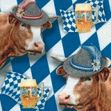 Kühe, Bayern, Mass Bier, Oktoberfest - Cows, Bavaria, beer, Oktoberfest - Vaches, Bavière, bière, Oktoberfest