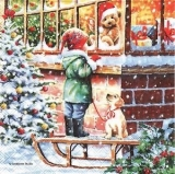 Kind am Weihnachtsschaufenster mit Hund & Schlitten - Child at Christmas store window with dog and sled - Enfant sur la vitrine de Noël avec le chien et le traîneau