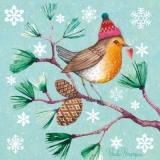 Rotkehlchen, Vogel mit Mütze - Robin, bird with hat  - Robin, oiseau avec chapeau