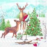 Rehe und Santas Ski - Deer and Santas Ski - Cerfs et Ski de Santa