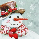 Hübscher Schneemann - Pretty Snowman - Jolie bonhomme de neige