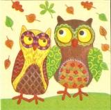 Ein Eulenpaar - an owl couple - Un couple de hibou