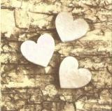 Herzen aus Holz auf Borke - Wooden hearts on bark - Coeurs en bois sur lécorce