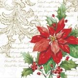 Christstern, elegantes Muster & Text Weihnachtslied - Poinsettia, elegant pattern & lyrics Christmas carol - Poinsettia, motif élégant et paroles Christmas Carol