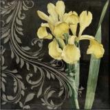 Gelbe Iris & elegantes Muster - Yellow Iris & elegant pattern - Iris jaune et élégant motif