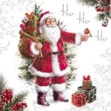 weihnachtsmann mit Rotkehlchen und vielen Geschenken - Santa Claus with robin and many gifts - Père Noël avec merle et nombreux dons