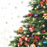 Kleines Rotkehlchen im Weihnachtsbaum - Little Robin in christmas tree - Petit rouge-gorge dans larbre