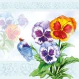 Marienkäfer besucht Stiefmütterchen - Ladybird visits pansies - La coccinelle visite des pensées