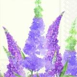 Wunderschöner Flieder - Buddleja - beautiful Lilac- Lilas jolie