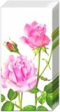 Wünderschöne Rosen für Dich - Beautiful roses for you - Belles roses pour vous