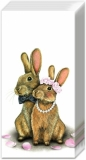 Herr & Frau Hase sehr verliebt - Mr & Mrs Rabbit very much in love - M. et Mme Lapin très amoureux
