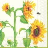 Biene an Sonnenblumen - Bee at sunflowers - Abeille sur tournesol