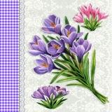 Kleine Krokussträußchen - Small Crocus bouquet - Petit Crocus bouquet