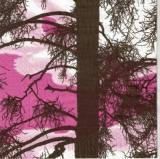 Großer Baum - Big tree - Grand arbre