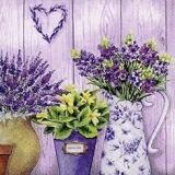 Blumen in Vasen & Töpfen, Lavendel, Tulpen, Margeriten, Primel... - Flowers in vases & pots, lavender, tulips, margin rites, primrose... - Fleurs dans des vases & pots, lavande, tulipes, rites de marg