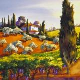 Wunderschöne Landschaft in der Toskana - Wonderful Tuscany landscape - Magnifique paysage Tuscany