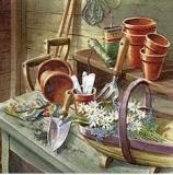 Im Gartenhäuschen - In the garden shed - Dans le hangar de jardin