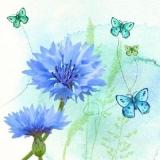 Schmetterlinge & Kornblumen - Butterflies & cornflowers - Papillons & bleuets