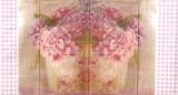 Hortensien & Rosen - Hydrangeas & Roses -  Hortensias et de roses