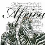 Afrika, Zebras, Geschriebenes - Africa, Zebras, Writing - Afrique, Zèbres, écriture