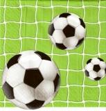 Fußbälle im Tor - Footballs and goal - Footballs et objectif