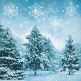 Tannen in verschneiter Landschaft - Fir trees in snow-covered landscape - Les sapins dans le paysage enneigé