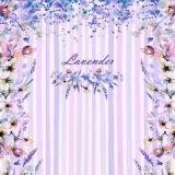 Lavendel & andere Blumen - Lavender & other flowers - Lavande & autres fleurs