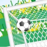 Torschuß, Fußball im Tor - Football goal - But de football