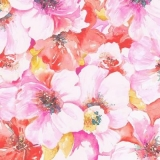 Blütenmeer pink bis rot - Sea of flowers pink up to red - Mer de fleurs rose jusqu à rouge