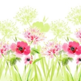 Mohnblumen und andere, zarte Blumen im Wind - Poppies and other, tender flowers in the wind - Coquelicots et autres fleurs tendres dans le vent