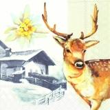Hirsch an einer Berghütte - Deer at mountain hut - Cerf à la cabane de montagne