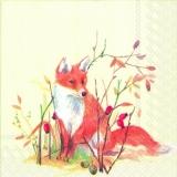 Fuchs & Fasanenpaar - Fox & Pheasant couple - Renard et couple de Faisan