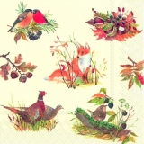 Vögel, Fuchs & Fasanenpaar - Birds, fox & pheasant couple - Oiseaux, fox & couple faisan