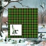 Ententeich im Winter - Duck pond in winter - Etang de canards en hiver