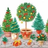 Dekorative Weihnachtsbäume & Weihnachtsgrün - Decorative Christmas Trees  - Décoratif Noël Arbres