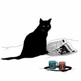 Katze mit Zeitung - Cat with Newspaer - chat avec Journal