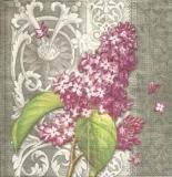 Flieder & elegantes Muster - Lilac & elegant pattern - Lilas et élégant motif