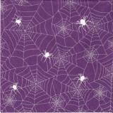 Spinnen in ihren Spunnennetzen - Spiders in their spider nets - Araignées à ses secteurs daraignées