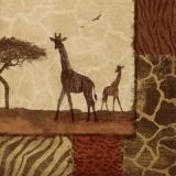 Giraffen in afrikanischer Steppe, wilde Tiere - Giraffes in African steppe, wild animals -Girafes dans la steppe africaine, animaux sauvages